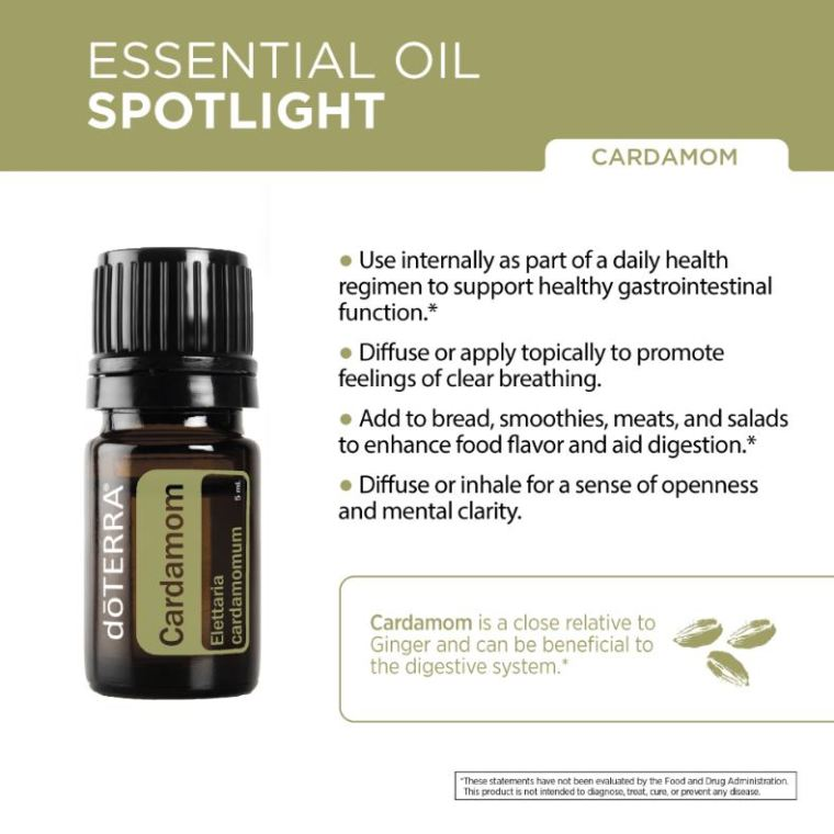 Cardamom-Essential-Oil-Spotlight